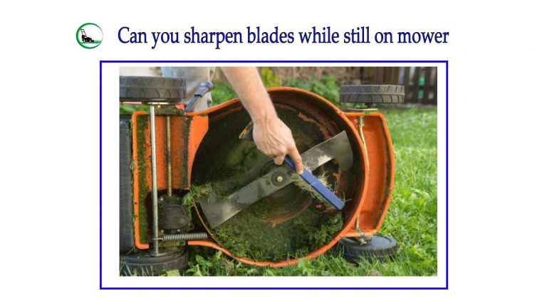 Can you sharpen blades while still on mower ? | Easy Buyer Guideline 2021