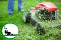 Why does a lawn mower live such a hard life | Easy Buyer Guideline 2021